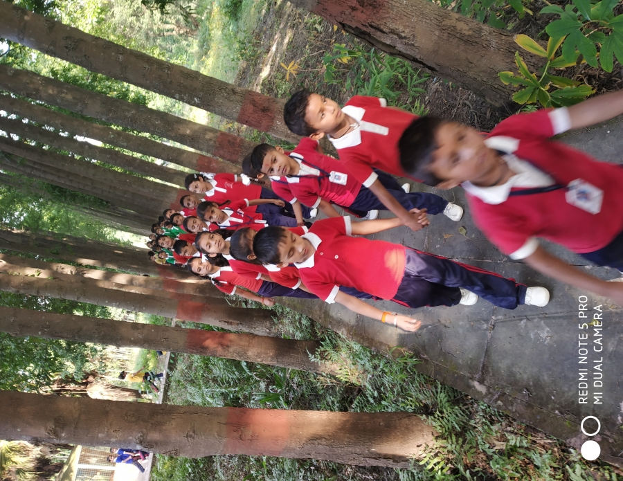 Educational Tour To Sanjay Van